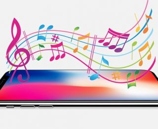 iphone XS Max – Constellation Zil Sesi